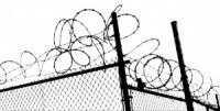 barbed wire fencecropped